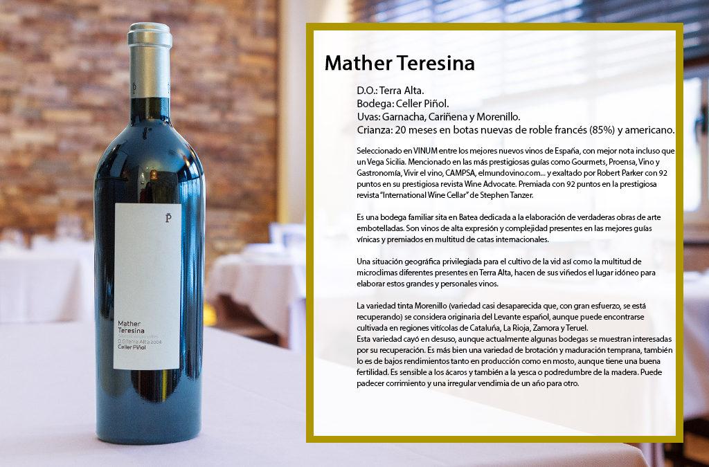 Mather Teresina