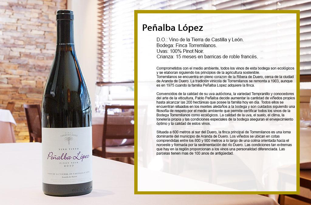 Peñalba López