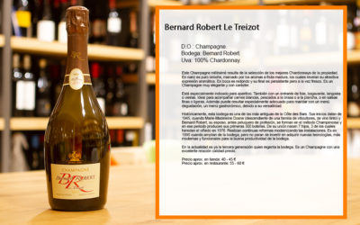 Bernard Robert Le Treizot